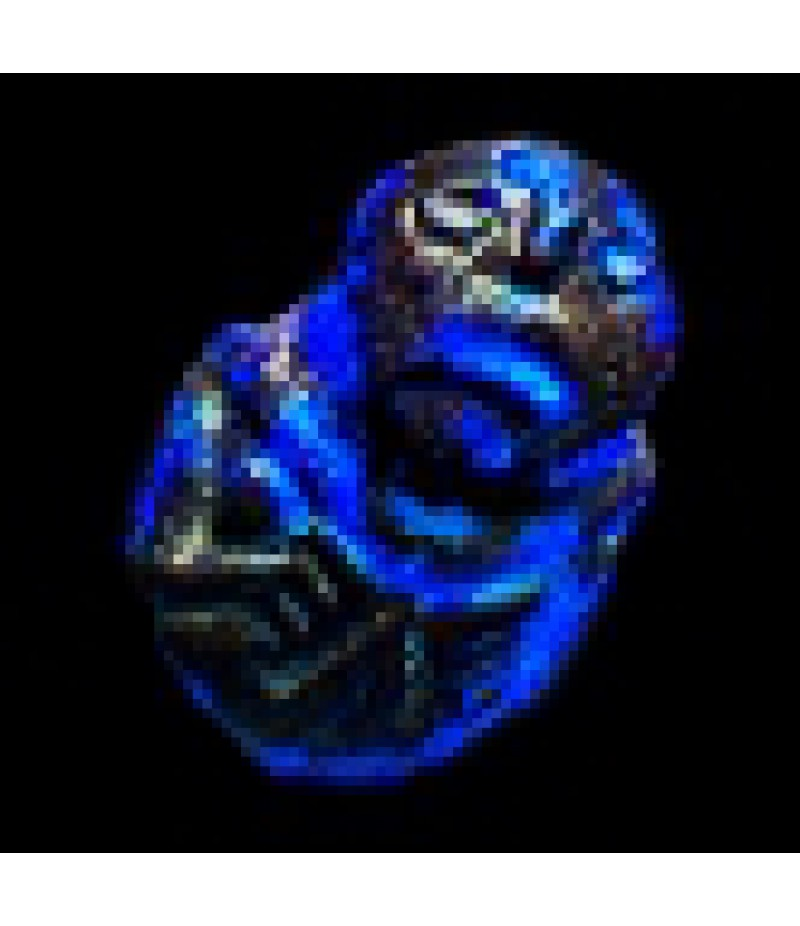 Path of Exile  >  Items  >  Standard  >  Orb of Annulment*10